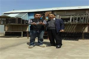 中国石油信鸽协会新乡分会