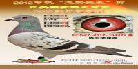 2012春秋季年度鸽王