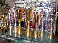 2014年春季奖杯系列