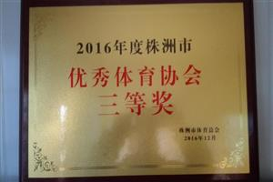 2016年株洲信鸽荣誉
