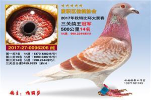 2017秋季奖关欣赏